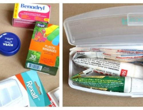 Purse First Aid Kit (just in time for summer)