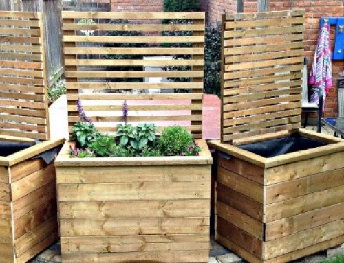 DIY Privacy Planters