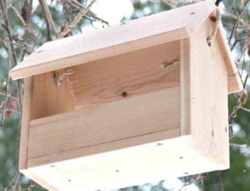 DIY Bird Feeder – $4 and 20 minutes to make