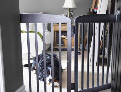 DIY – Free-Standing Pet Gate