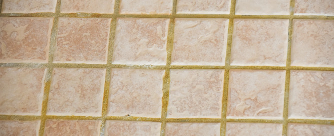The best way to clean your shower, how to clean the shower, chemical-free cleaning, sanitize your shower, deep clean your shower