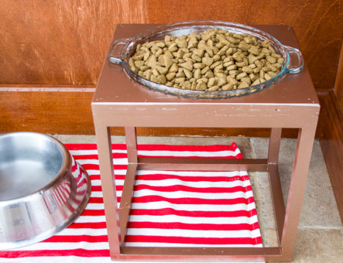 Make your own pet food stand