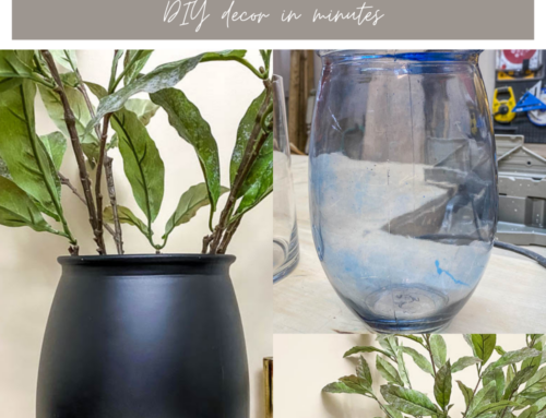 DIY Decor – Painted Vases
