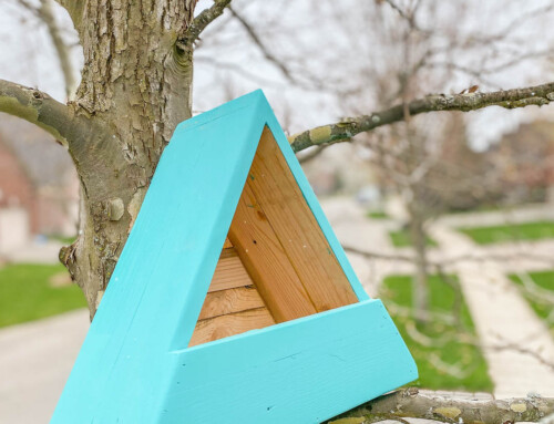 Scrap wood nesting house / scrap wood birdhouse